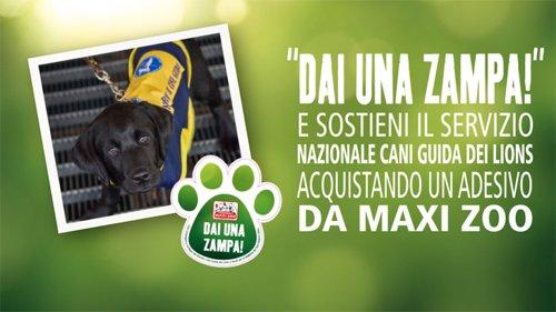 Campagna Maxi Zoo Dai una zampa
