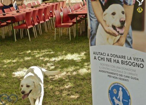Raccolta fondi per donare un cane guida