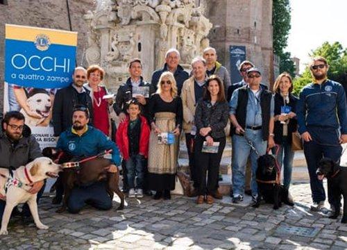 Cane guida dei Lions a Cesena