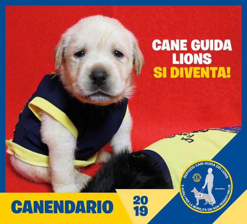 Canendario 2019